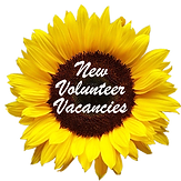 Check our volunteering vacancies