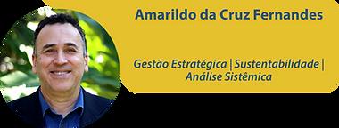 Amarildo_Prancheta 1.png