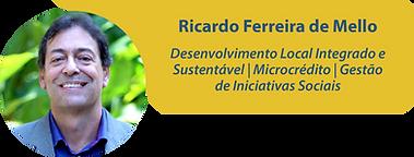 Ricardo Ferreira de Mello_Prancheta 1.pn