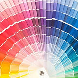 paleta cor.jpg
