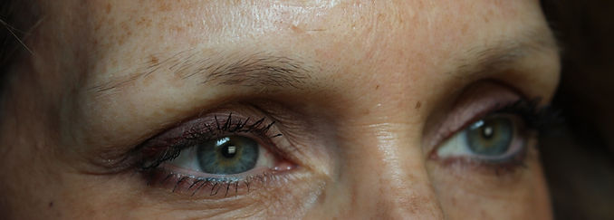 Client #10 - Before Permanent Makeup Eyebrows #2