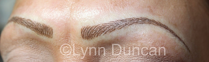 Client #21 - After Permanent Makeup Eyebrows #2