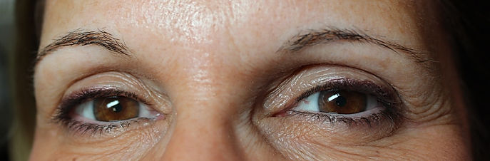 Client #9 - Before Permanent Makeup Eyebrows #2