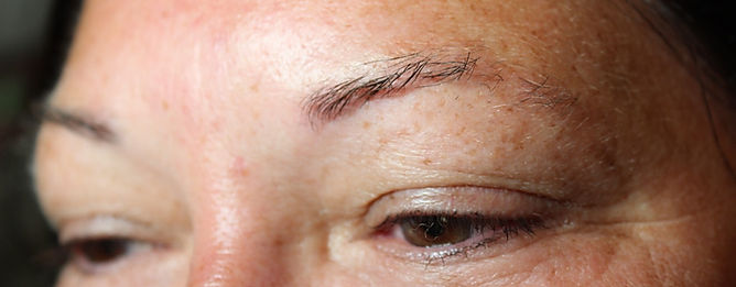 Client #12 - Before Permanent Makeup Eyebrows #2