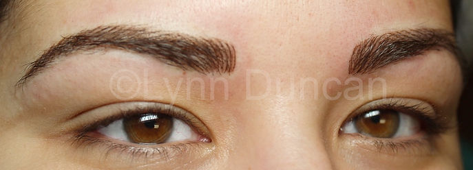 Client #7 - After Permanent Makeup Eyebrows #2