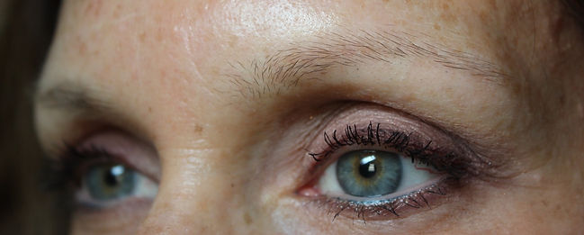 Client #10 - Before Permanent Makeup Eyebrows #3
