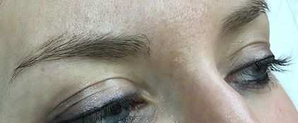 Client #10 - Before Eyebrow Microblading