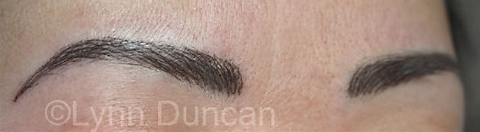 Client #20 - After Permanent Makeup Eyebrows