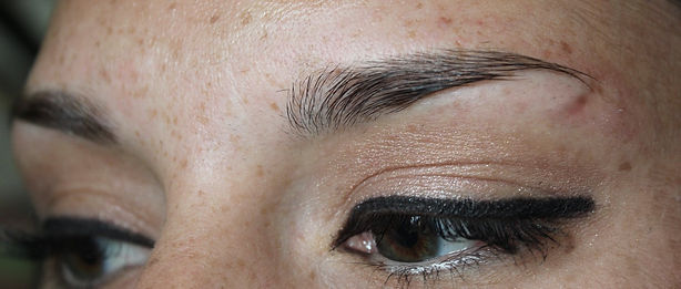 Client #6 - Before Permanent Makeup Eyebrows #3