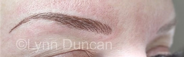 Client #19 - After Permanent Makeup Eyebrows #2