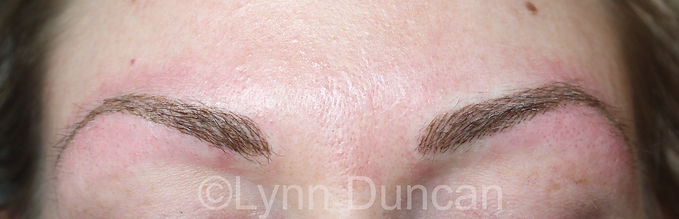Client #16 - After Permanent Makeup Eyebrows