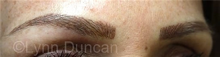 Client #25 - After Permanent Makeup Eyebrows #2