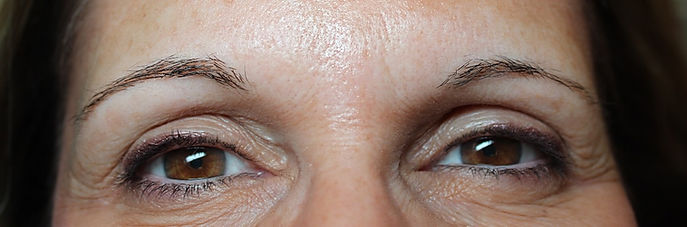 Client #9 - Before Permanent Makeup Eyebrows
