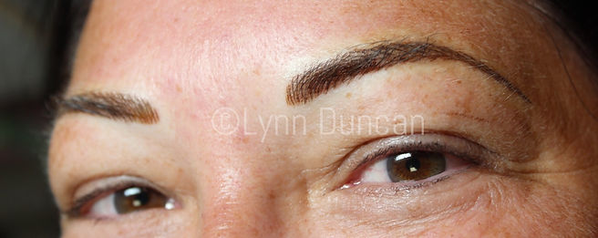 Client #12 - After Permanent Makeup Eyebrows #2