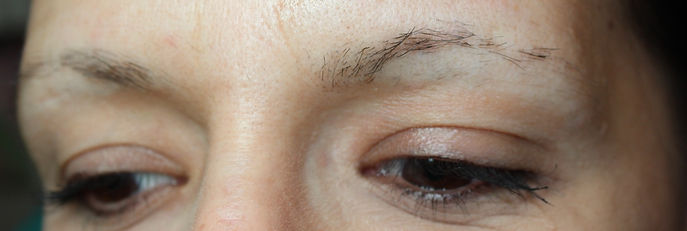 Client #4 - Before Permanent Makeup Eyebrows #3