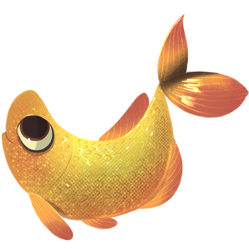 peixe-dourado.png