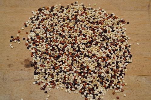 quinoa tricolore bio en vrac zéro déchet quinoa blanc bio quinoa rouge bio quinoa noir bio épicerie salée bio céréale bio