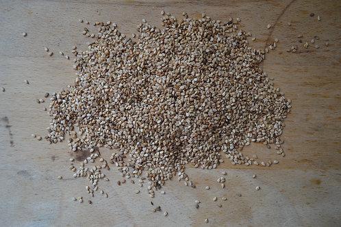 graines de sésame bio en vrac zéro déchet graine bio recette diététique épicerie salée bio salade bio hamburger bio pain bio