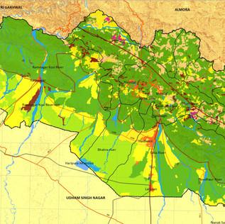 Forest Vulnerability & Environment