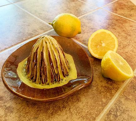 Hand Made Stoneware Citrus Juicer - Amber/Yellow