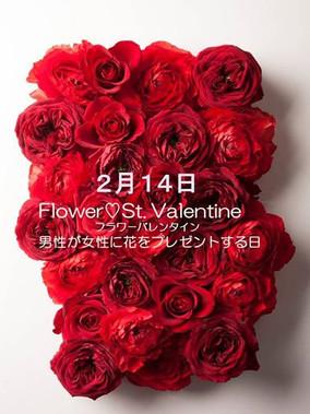 TSUTAYA TOKYO ROPPOGI バレンタインディスプレイ