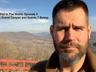 Wild in the World Episode 3 : Arkansas Grand Canyon and Scenic 7 Byway - Jasper, Arkansas