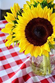 Red Gingam w Sunflower.JPG
