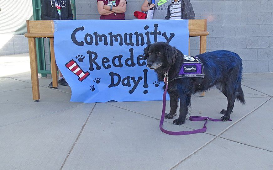 Community Readers Day
