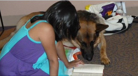 Has Reading Gone to the Dogs?