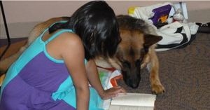 Reading Therapy Dog Gus