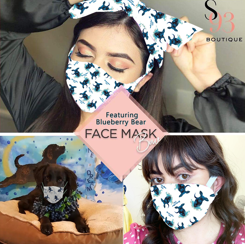 Two styles of Blueberry Bear face mask