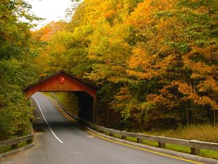 10 GORGEOUS Michigan Fall Photos