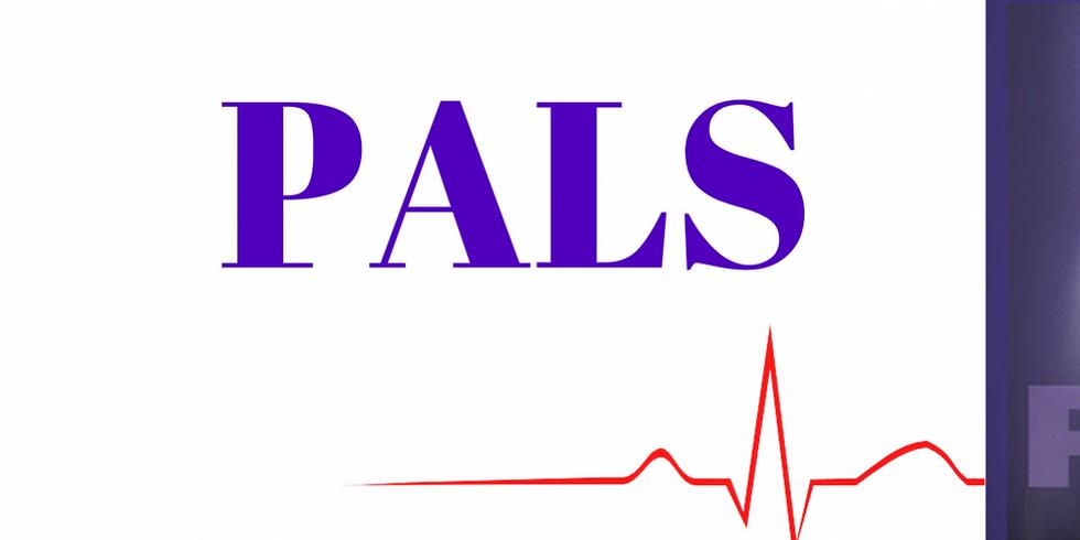 Pediatric Advanced Life Support Refresher (ASHI)