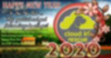 Happy%202020_edited.jpg