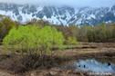 「春の兆し」 長野県・栄村