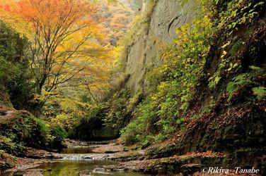 「彩峡(いろどりのたに)」 千葉県・梅ヶ瀬渓谷