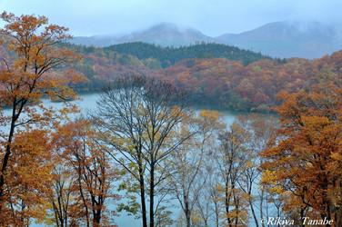 「静寂に暮れる」 長野県・志賀高原