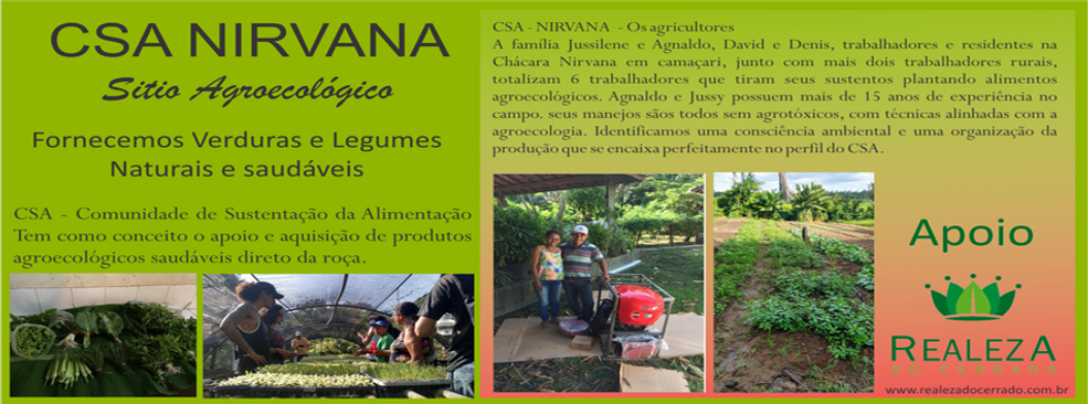 Banner site sitio nirvana.png