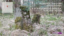 AN-KU-WDB1-056.jpg