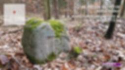 TimePhoto_20200314_121534.jpg