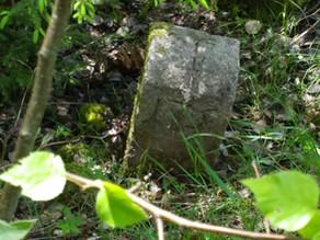 Pr-PB-1803: Mehrere Grenzsteine aufgenommen