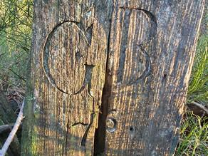 Landesgrenzsteine aus Holz entdeckt...
