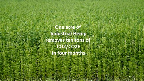 hemp CO2.png