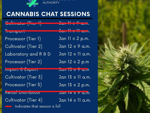 Cannabis Chat Sessions