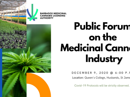 Public Forum on Medicinal Cannabis Industry