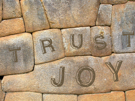 Achieving Extraordinary Results With Joy-based Trust