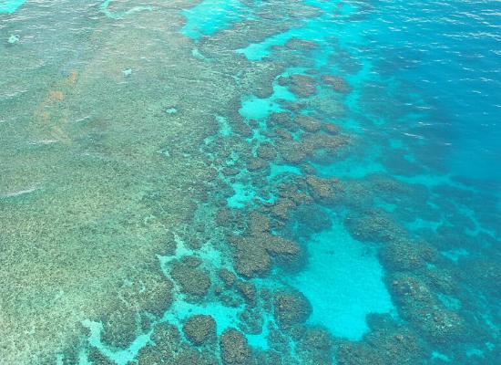 Fotografia tirada do alto com auxilio de drone da extensão de uma barreira de corais de ambiente raso. Percebe-se os grandes montes formados pelo acúmulo de indivíduos coral na Plataforma Continental criando um cordão de corais que forma a barreira em meio ao oceano