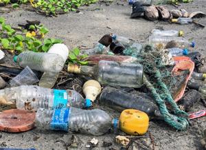 Figura mostrado a poluição na praia. Várias garrafas pet, de vidro, lâmpada, pedaço de chinelo , entre outras coisas.