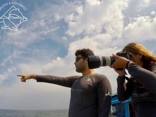Baleias-de-bryde através das lentes fotográficas: a identidade de cada animal