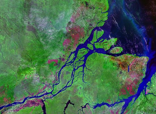 Imagem de satélite do rio Amazonas, cujas águas estão em azul e cortam uma grande região em verde. As águas do rio fluem para o oceano que está em azul mais escuro. Ao longo do rio, nas margens e em alguns locais do verde, as aglomerações urbanas estão representadas como manchas em rosa.
